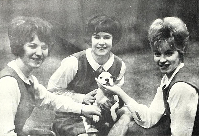 An unofficial live bulldog posing with the cheerleaders in 1967.