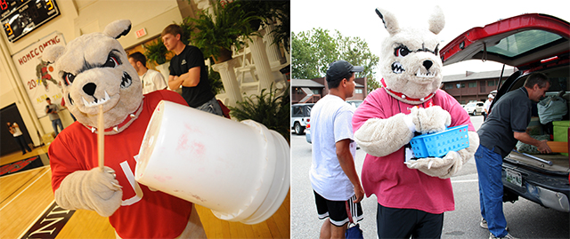Buster works the crowd in the left photo and helps on Move-in Day in the right photo.
