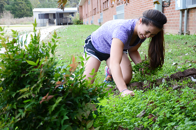 Morgan Morfe helps with yard work for Campus and Community Day