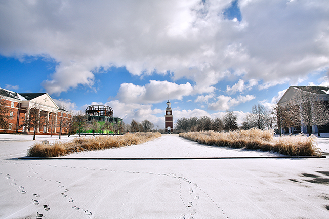 The great lawn in the snow