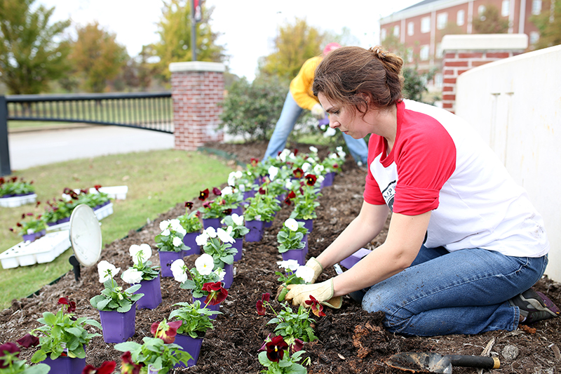 Karen works with fellow staff members to plant flowers at the West entrance of campus.