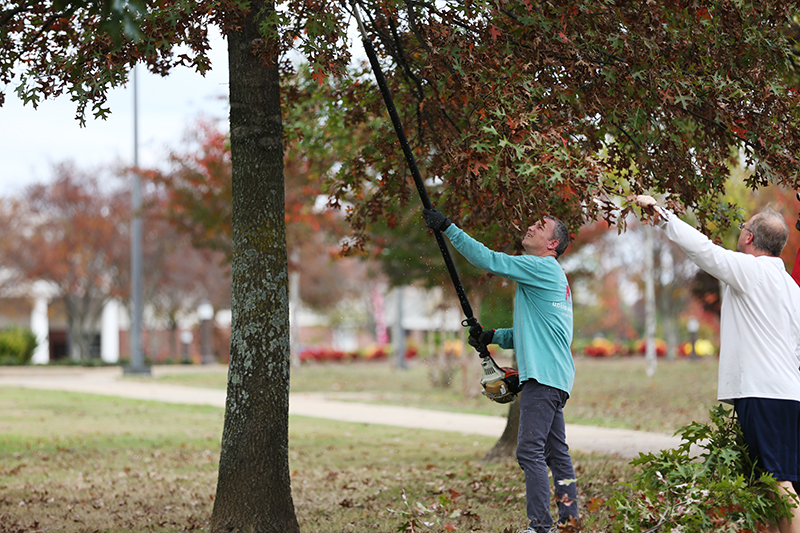 Dub Oliver helps trim trees along the Great Lawn.